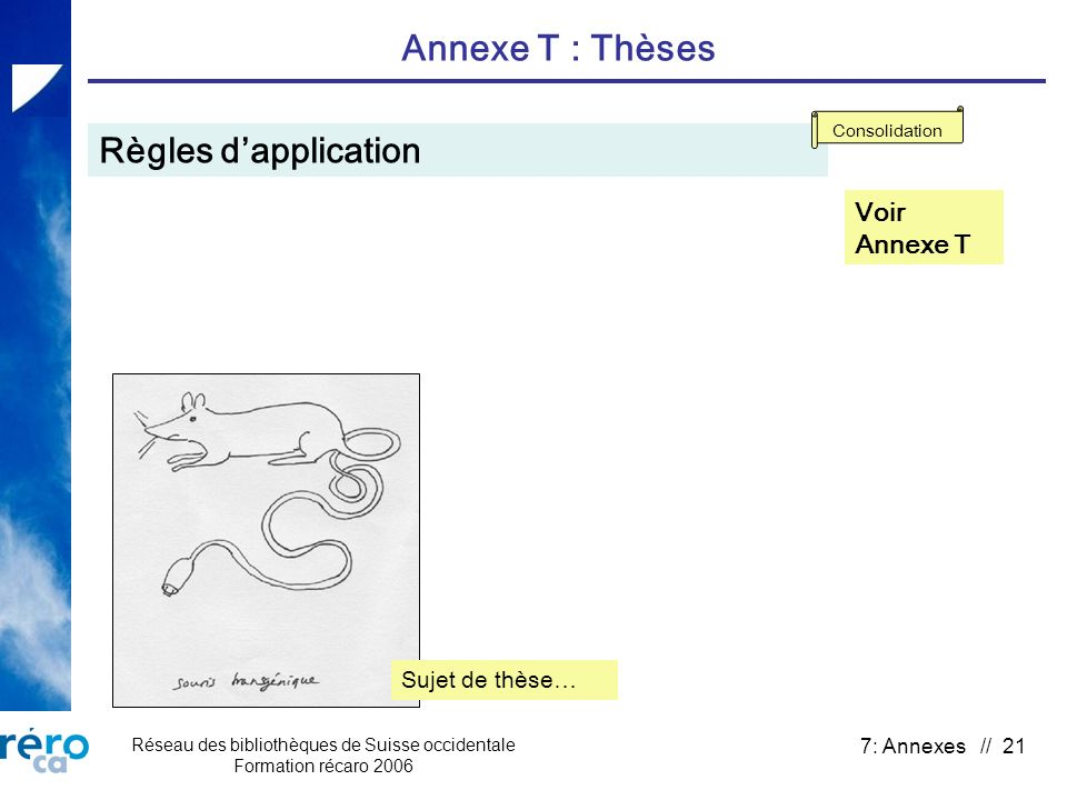 Réseau des bibliothèques de Suisse occidentale Formation récaro 2006 7: Annexes // 21 Annexe T : Thèses Règles dapplication Voir Annexe T Consolidatio