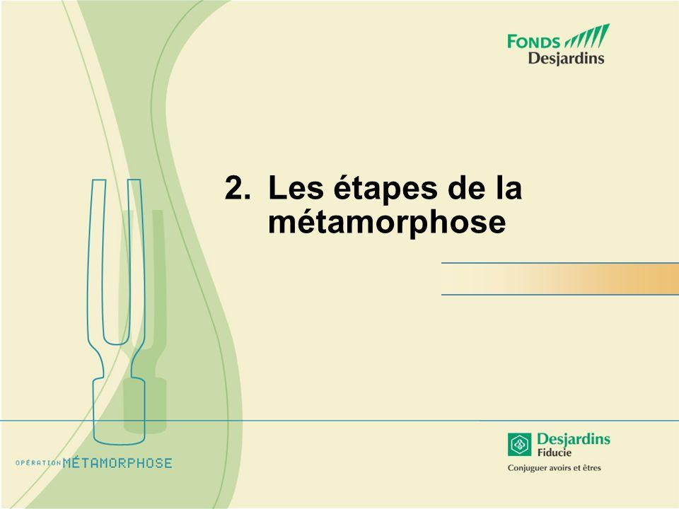 2.Les étapes de la métamorphose