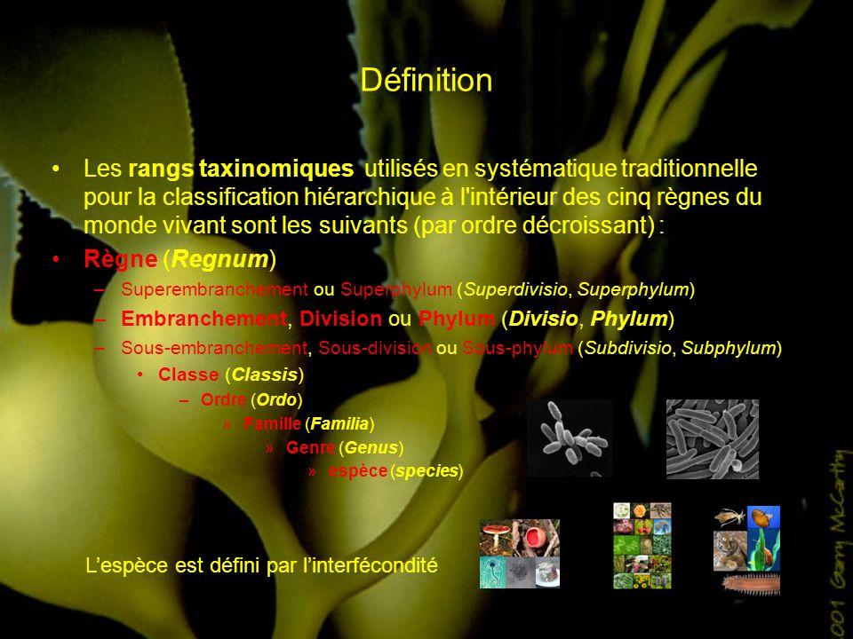 Définition Les rangs taxinomiques utilisés en systématique traditionnelle pour la classification hiérarchique à l'intérieur des cinq règnes du monde v