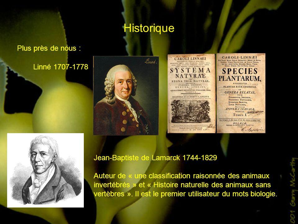 Historique Plus près de nous : Linné 1707-1778 Jean-Baptiste de Lamarck 1744-1829 Auteur de « une classification raisonnée des animaux invertébrés » e