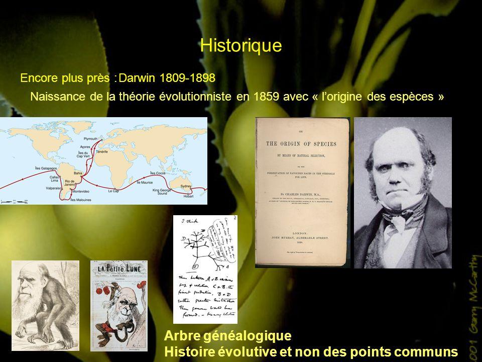 Historique Encore plus près :Darwin 1809-1898 Naissance de la théorie évolutionniste en 1859 avec « lorigine des espèces » Arbre généalogique Histoire