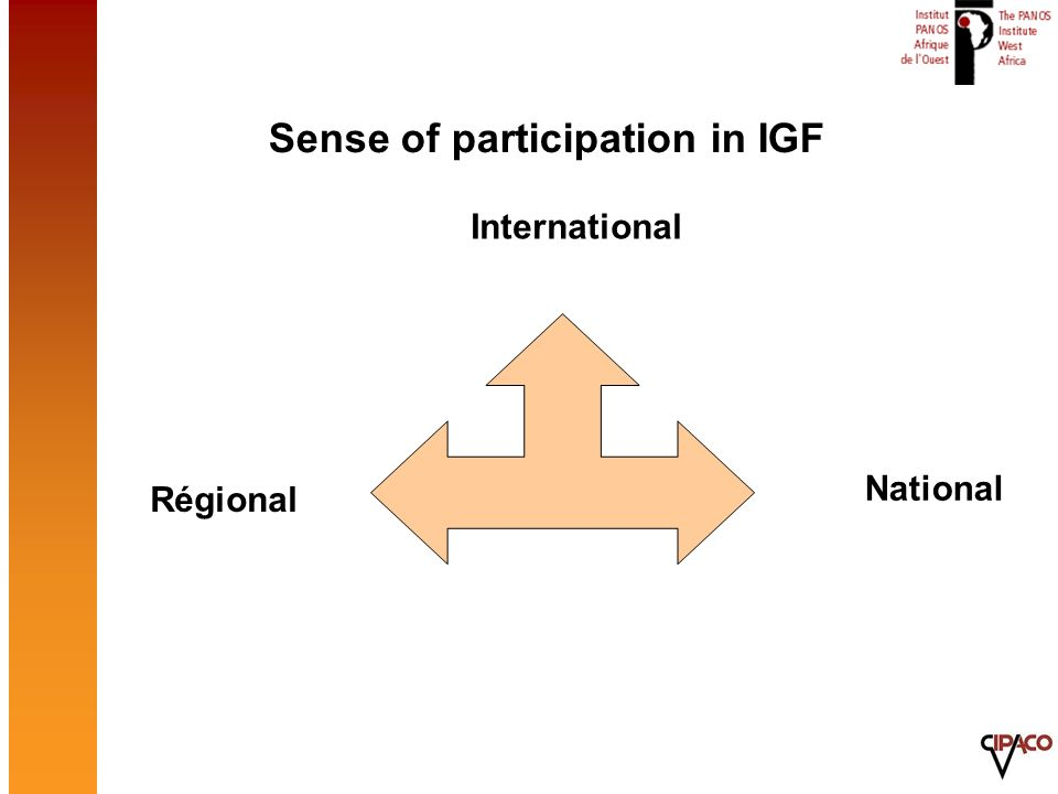 The African participation in IGF so far National meetings in West Africa: – Nigeria : meetingsdéclarations (07/2006 and 11/2008) – Senegal Government, 2008 and a next one in Nov 2009 – others.