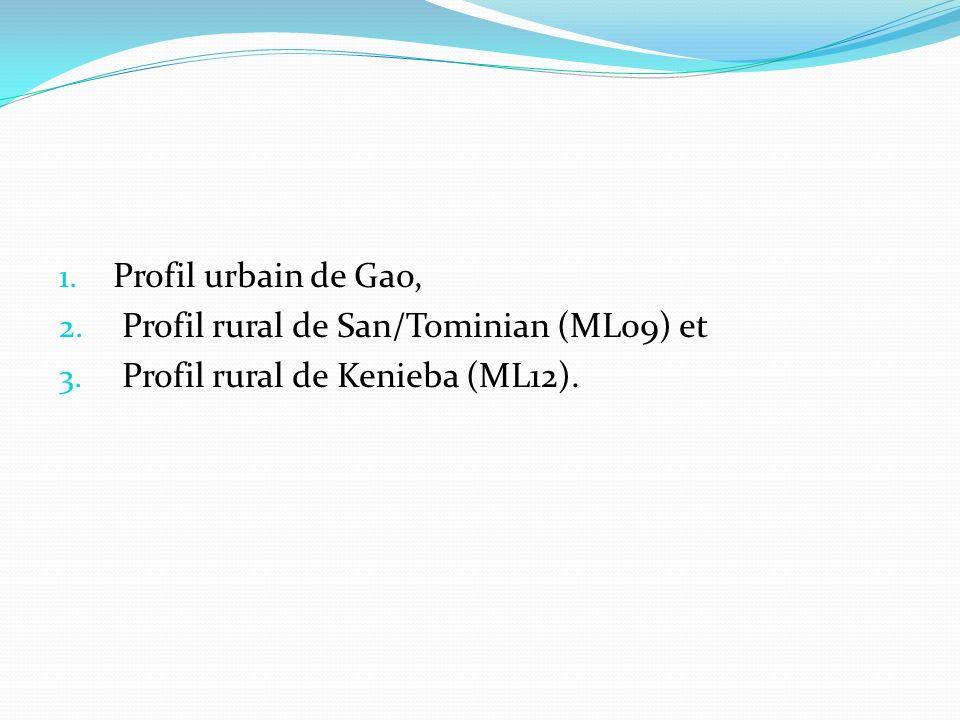 1. Profil urbain de Gao, 2. Profil rural de San/Tominian (ML09) et 3. Profil rural de Kenieba (ML12).