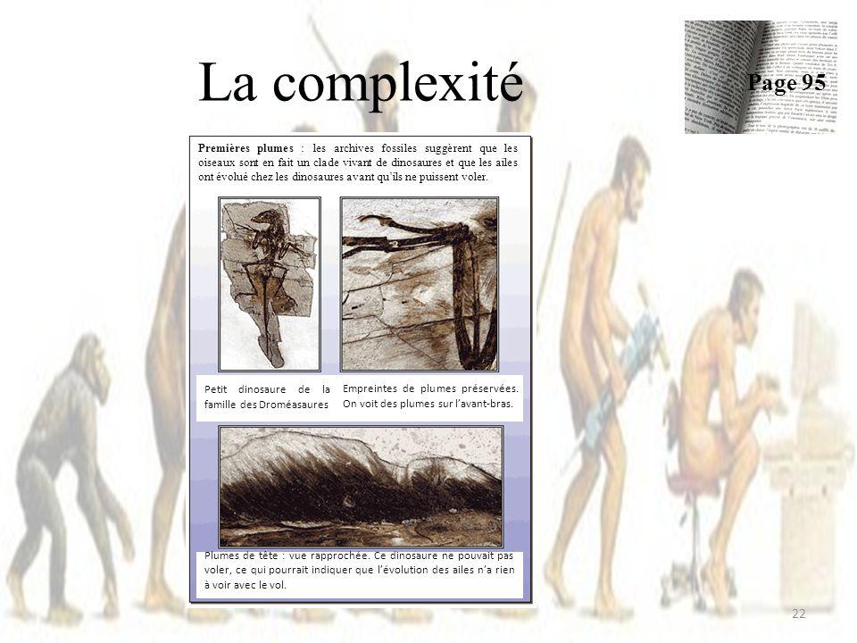 La complexité 22 Page 95 Premières plumes : les archives fossiles suggèrent que les oiseaux sont en fait un clade vivant de dinosaures et que les ailes ont évolué chez les dinosaures avant quils ne puissent voler.