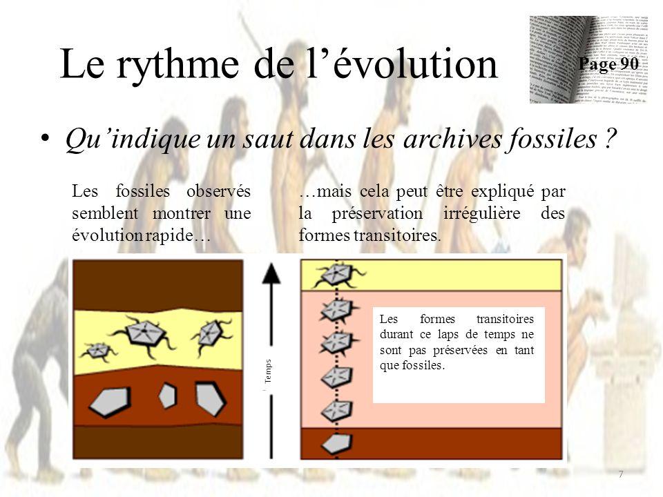 Le rythme de lévolution Quindique un saut dans les archives fossiles .