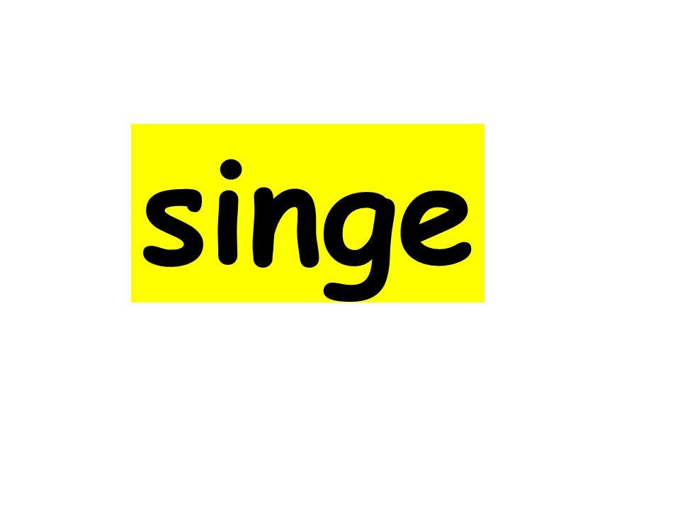 singe