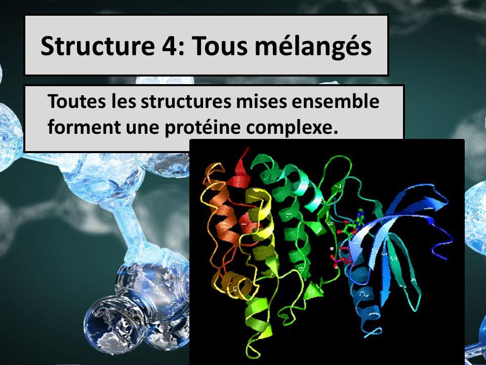 Structure 4: Tous mélangés Toutes les structures mises ensemble forment une protéine complexe.