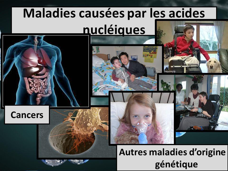 Maladies causées par les acides nucléiques Cancers Autres maladies dorigine génétique