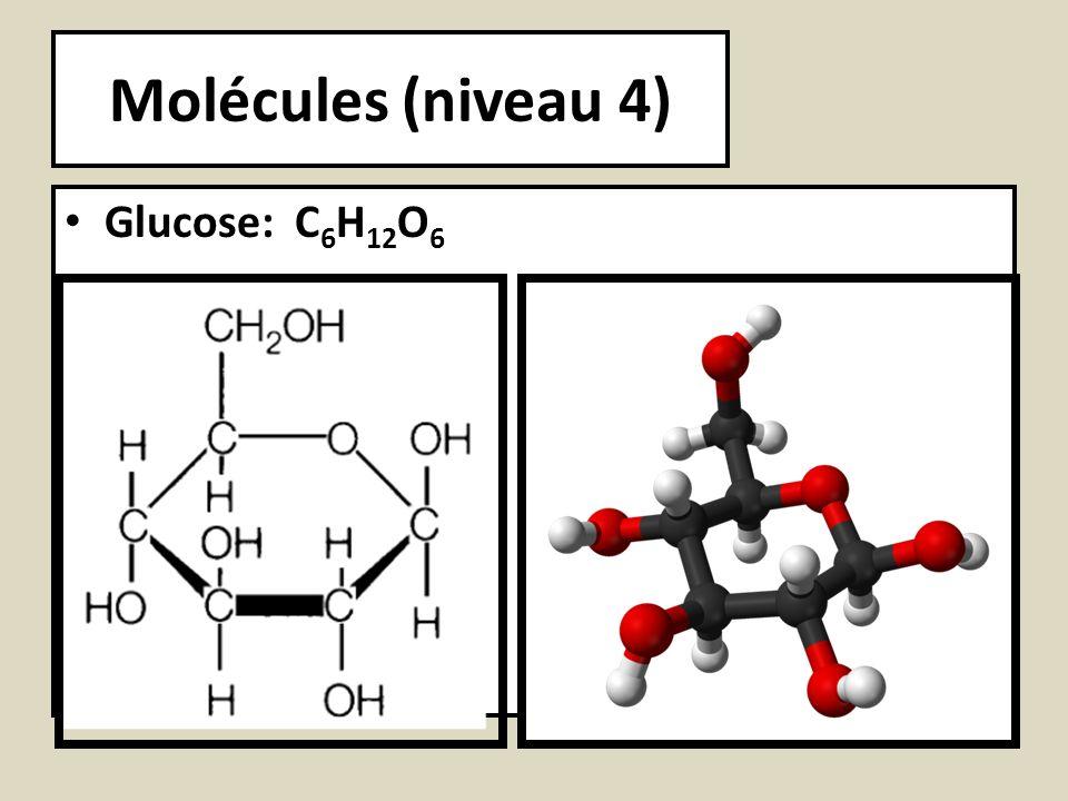Molécules (niveau 4) Glucose: C 6 H 12 O 6