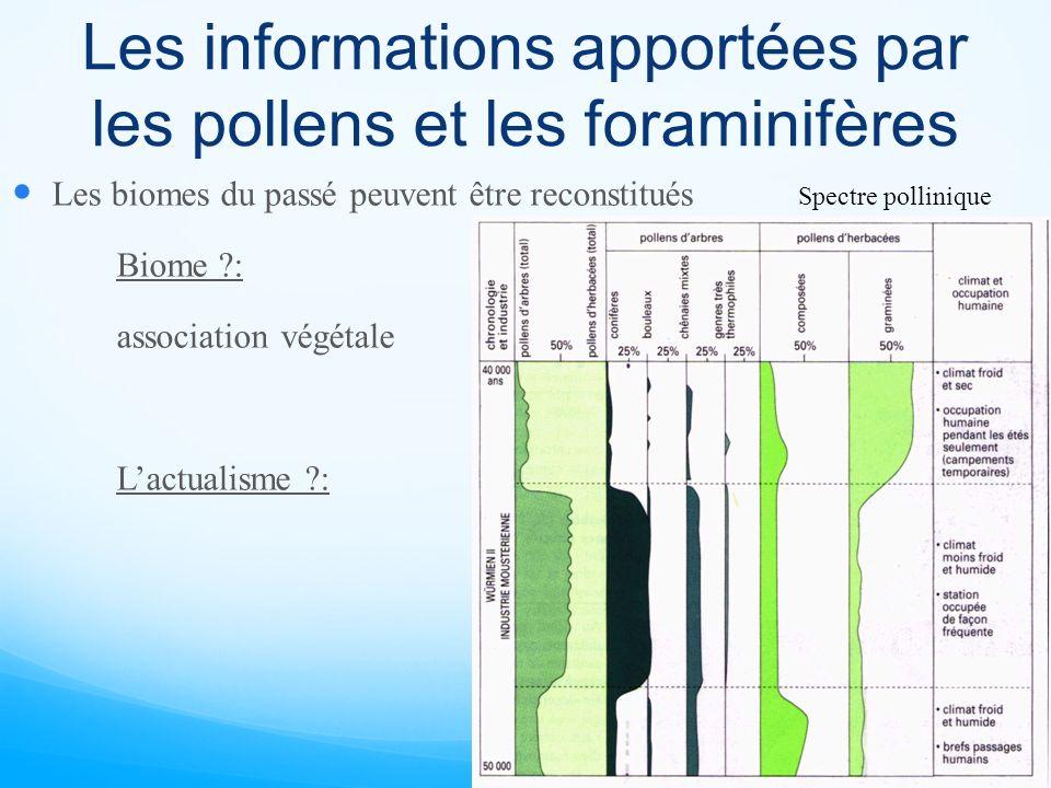 Les informations apportées par les pollens et les foraminifères Les biomes du passé peuvent être reconstitués Biome ?: association végétale Lactualism