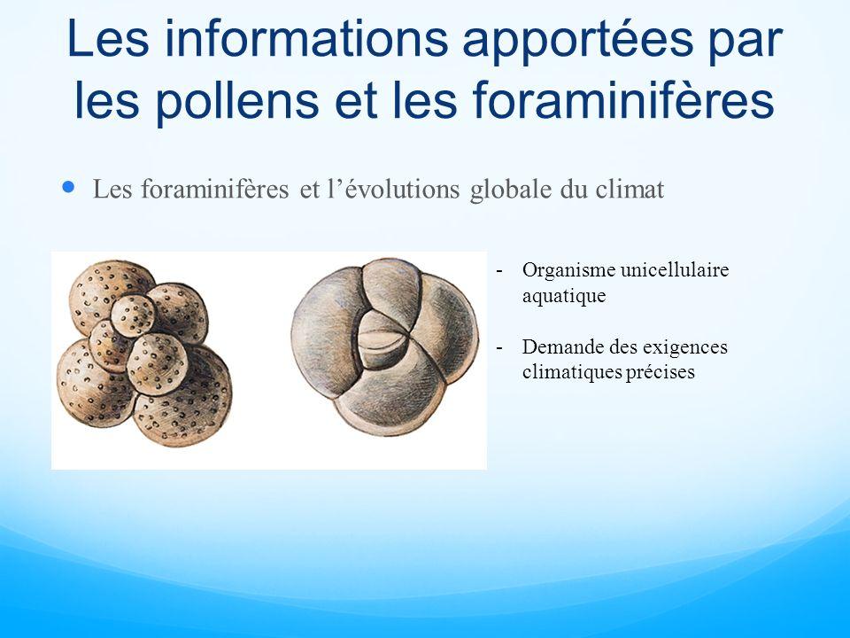 Les informations apportées par les pollens et les foraminifères Les foraminifères et lévolutions globale du climat -Organisme unicellulaire aquatique