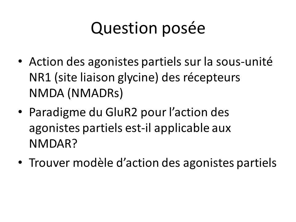 Question posée Action des agonistes partiels sur la sous-unité NR1 (site liaison glycine) des récepteurs NMDA (NMADRs) Paradigme du GluR2 pour laction des agonistes partiels est-il applicable aux NMDAR.