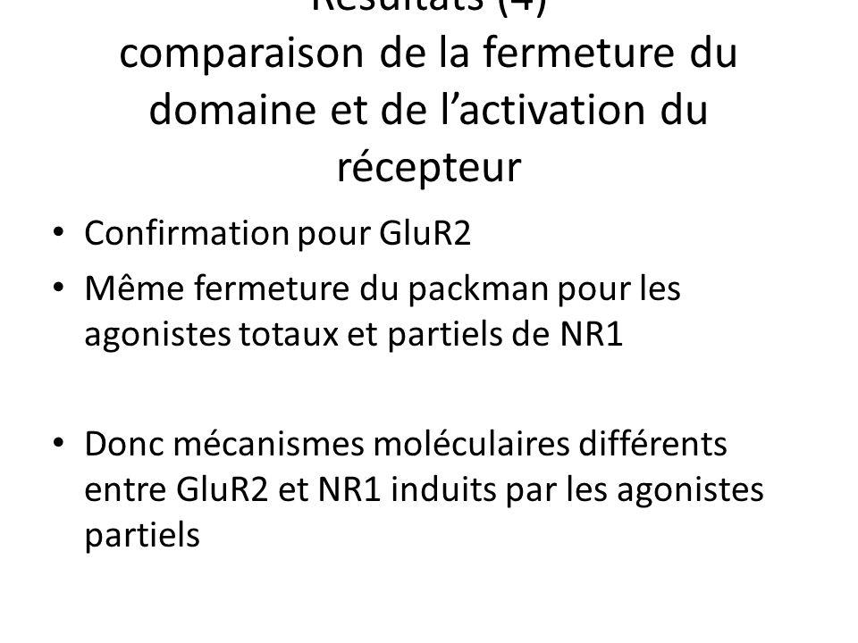 Résultats (4) comparaison de la fermeture du domaine et de lactivation du récepteur Confirmation pour GluR2 Même fermeture du packman pour les agonistes totaux et partiels de NR1 Donc mécanismes moléculaires différents entre GluR2 et NR1 induits par les agonistes partiels