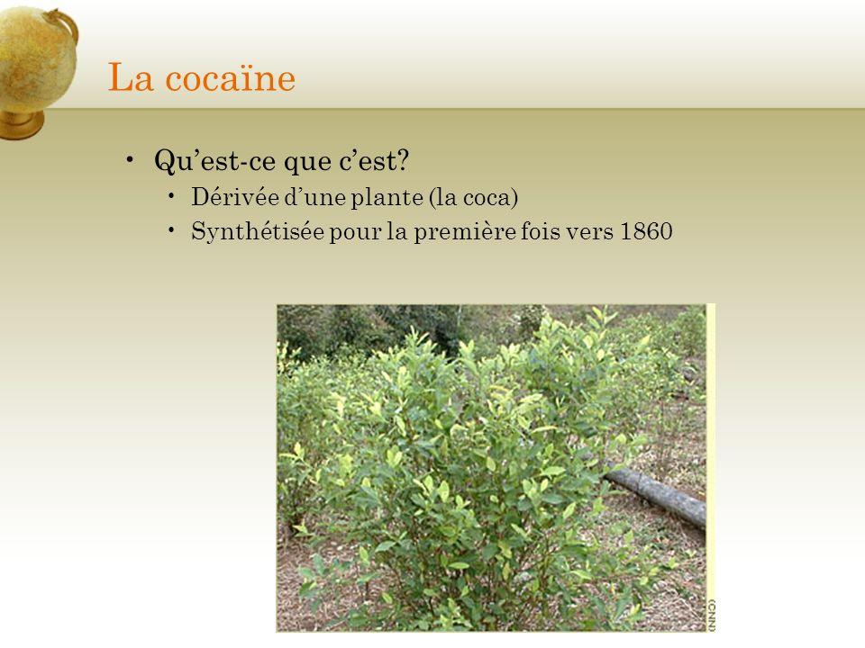 La cocaïne Quest-ce que cest? Dérivée dune plante (la coca) Synthétisée pour la première fois vers 1860