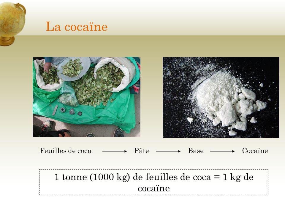 La cocaïne Feuilles de cocaPâteBaseCocaïne 1 tonne (1000 kg) de feuilles de coca = 1 kg de cocaïne