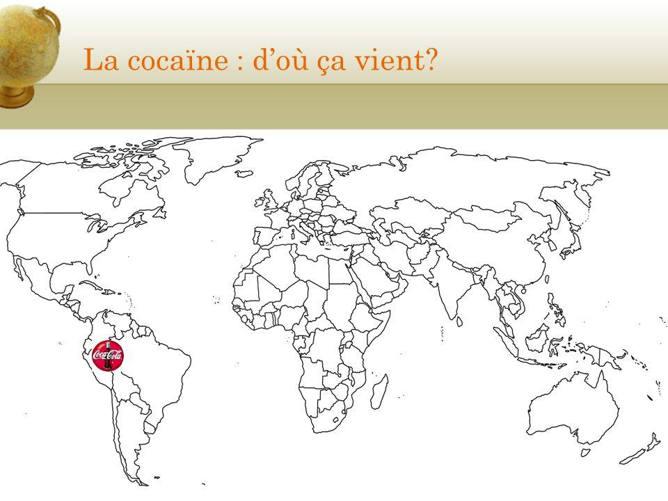 La cocaïne : doù ça vient?