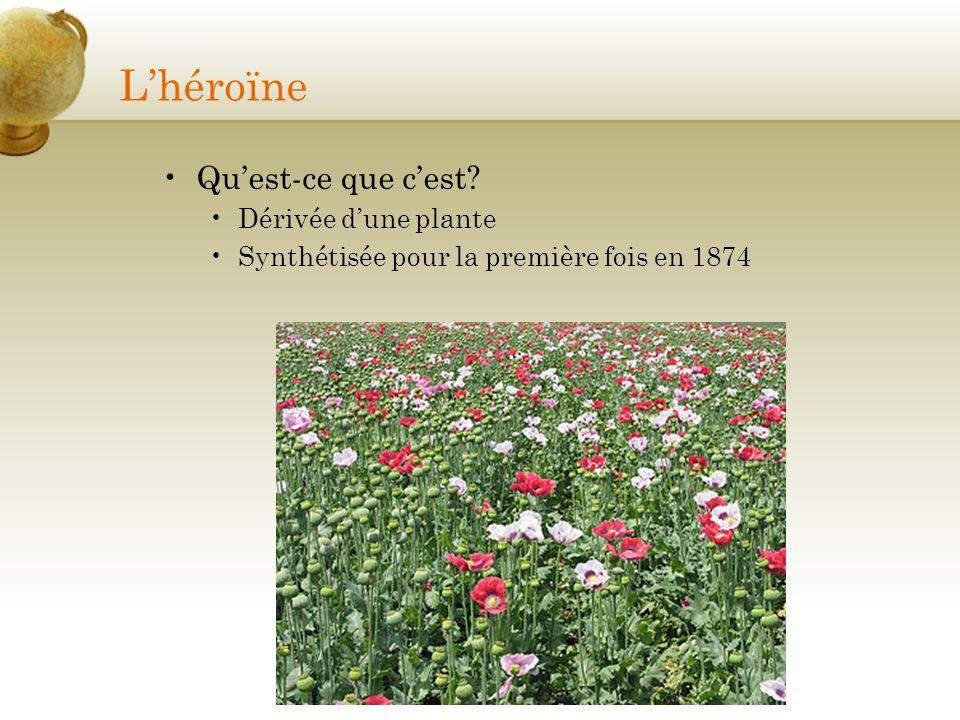 Lhéroïne Quest-ce que cest? Dérivée dune plante Synthétisée pour la première fois en 1874