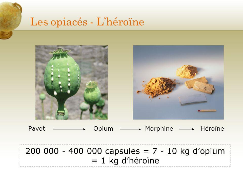 Les opiacés - Lhéroïne PavotOpiumMorphineHéroïne 200 000 - 400 000 capsules = 7 - 10 kg dopium = 1 kg dhéroïne