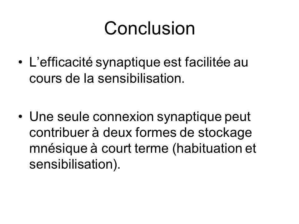 Conclusion Lefficacité synaptique est facilitée au cours de la sensibilisation. Une seule connexion synaptique peut contribuer à deux formes de stocka