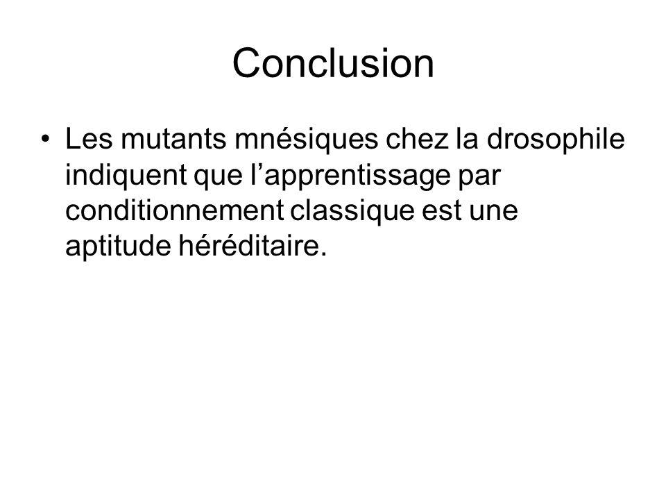 Conclusion Les mutants mnésiques chez la drosophile indiquent que lapprentissage par conditionnement classique est une aptitude héréditaire.