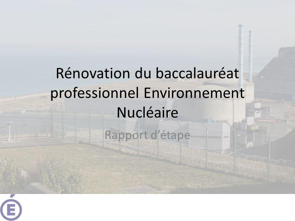 Rénovation du baccalauréat professionnel Environnement Nucléaire Rapport détape