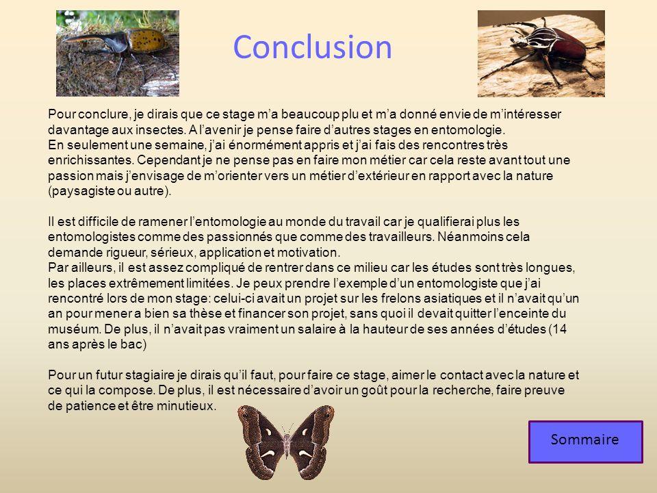 Sommaire Conclusion Pour conclure, je dirais que ce stage ma beaucoup plu et ma donné envie de mintéresser davantage aux insectes. A lavenir je pense