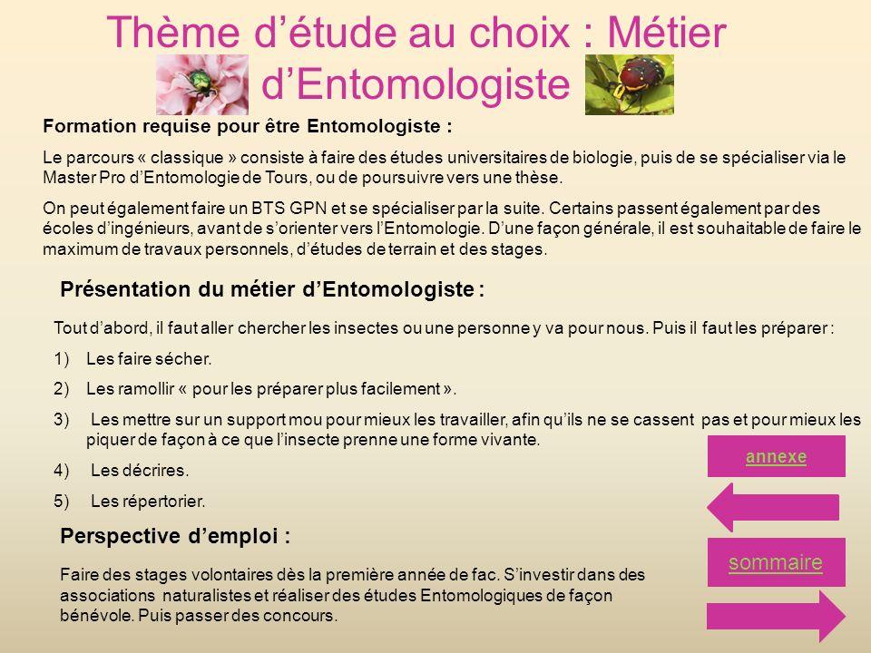 Thème détude au choix : Métier dEntomologiste Formation requise pour être Entomologiste : Le parcours « classique » consiste à faire des études univer
