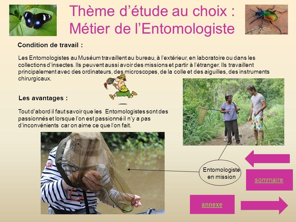 Thème détude au choix : Métier de lEntomologiste sommaire Condition de travail : Les Entomologistes au Muséum travaillent au bureau, à lextérieur, en