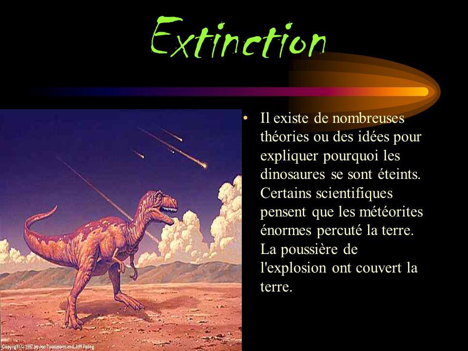 Habitat Certains dinosaures vivaient dans des habitats secs, certains vivaient dans des habitats forestiers, et certains dinosaures ont vécu dans l océan.