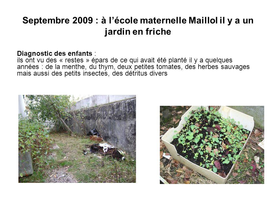 Septembre 2009 : à lécole maternelle Maillol il y a un jardin en friche Diagnostic des enfants : ils ont vu des « restes » épars de ce qui avait été planté il y a quelques années : de la menthe, du thym, deux petites tomates, des herbes sauvages mais aussi des petits insectes, des détritus divers