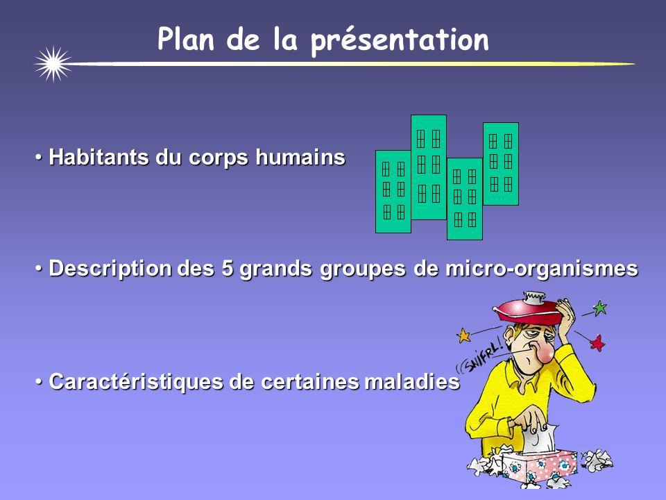 Les micro-organismes... bons ou mauvais !?!