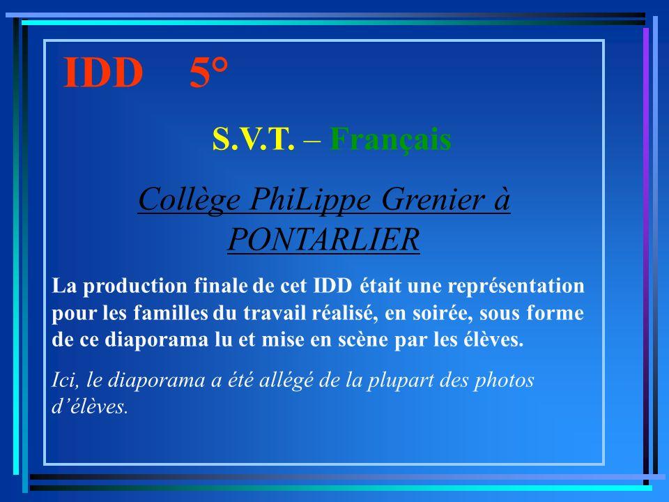 IDD 5° S.V.T.