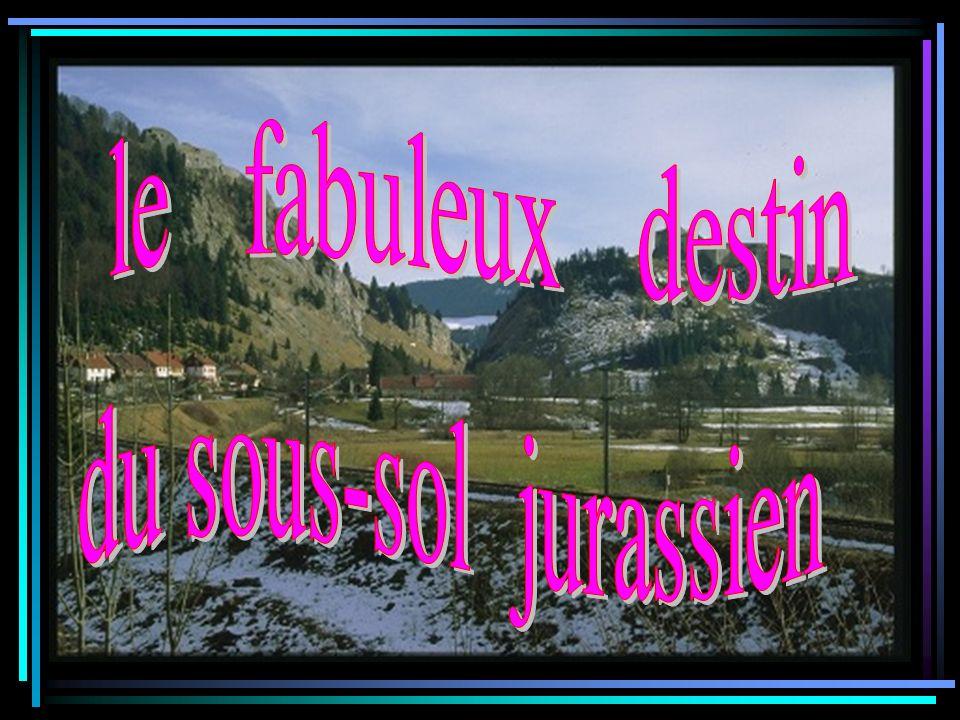 Le géologue sappelle….sappelle….Cest à vous de le trouver en suivant ces indications: Son prénom est synonyme de roche, de caillou et il convient très bien pour un géologue...