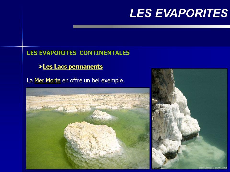 LES EVAPORITES CONTINENTALES Les Lacs permanents Les Lacs permanents Mer Morte La Mer Morte en offre un bel exemple. LES EVAPORITES