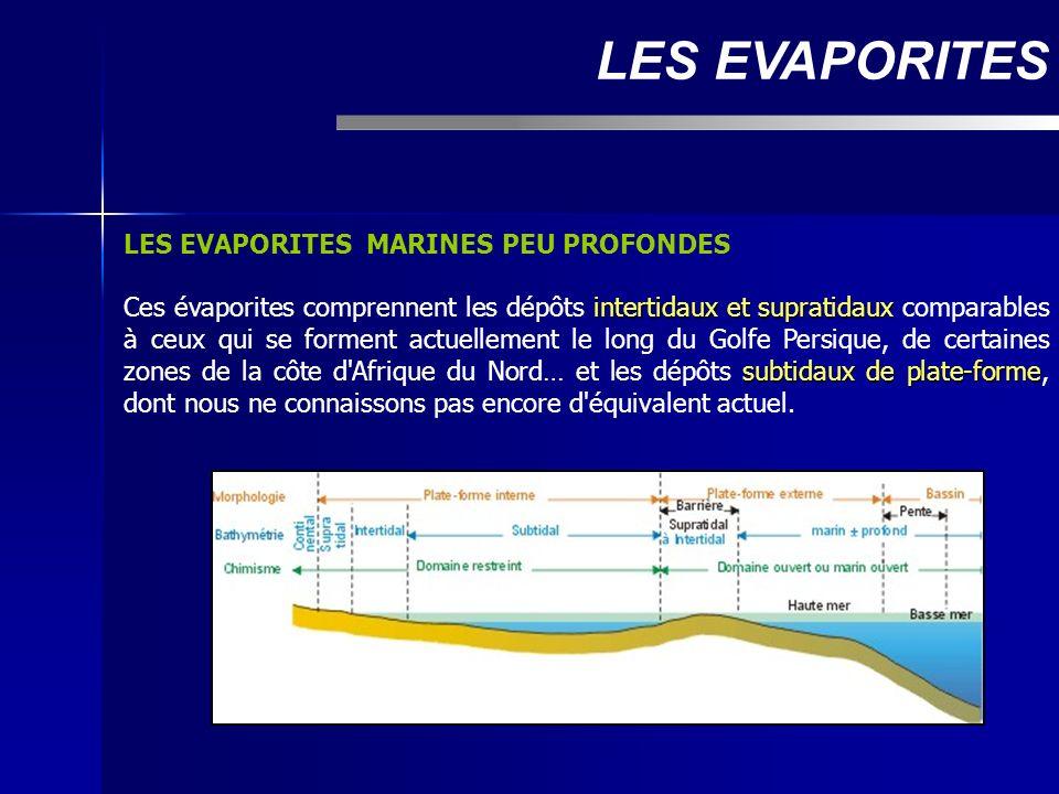 LES EVAPORITES MARINES PEU PROFONDES intertidaux et supratidaux subtidaux de plate-forme Ces évaporites comprennent les dépôts intertidaux et supratid