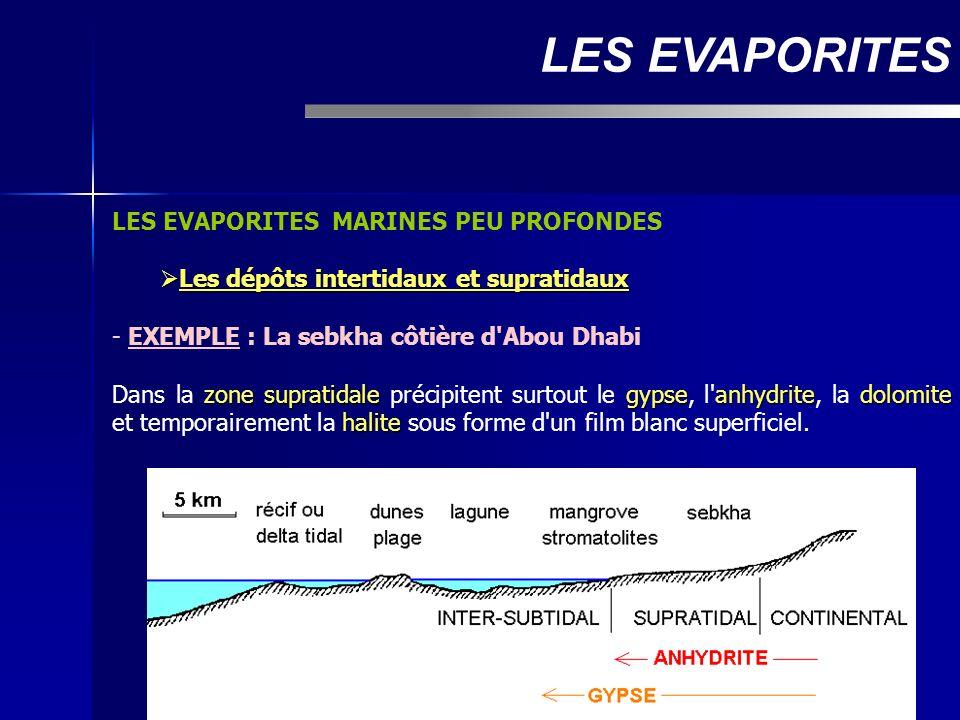 LES EVAPORITES MARINES PEU PROFONDES Les dépôts intertidaux et supratidaux Les dépôts intertidaux et supratidaux - EXEMPLE : La sebkha côtière d'Abou