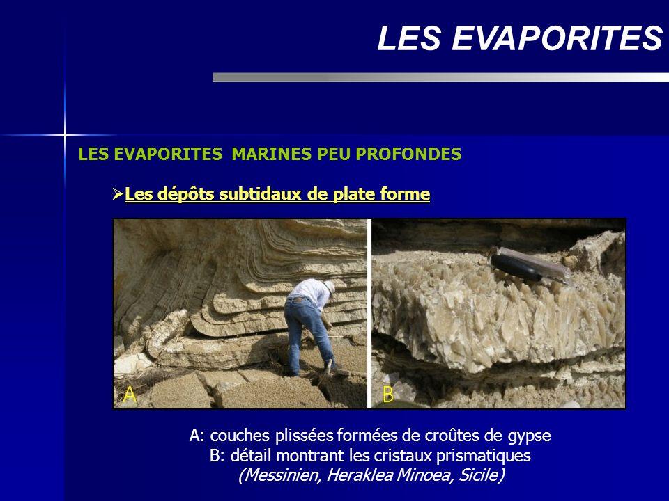 LES EVAPORITES MARINES PEU PROFONDES Les dépôts subtidaux de plate forme Les dépôts subtidaux de plate forme LES EVAPORITES A: couches plissées formée