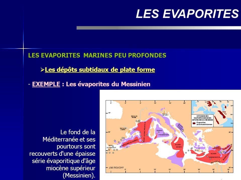LES EVAPORITES MARINES PEU PROFONDES Les dépôts subtidaux de plate forme Les dépôts subtidaux de plate forme - EXEMPLE : Les évaporites du Messinien L