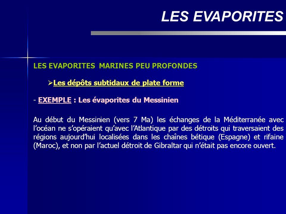 LES EVAPORITES MARINES PEU PROFONDES Les dépôts subtidaux de plate forme Les dépôts subtidaux de plate forme - EXEMPLE : Les évaporites du Messinien A