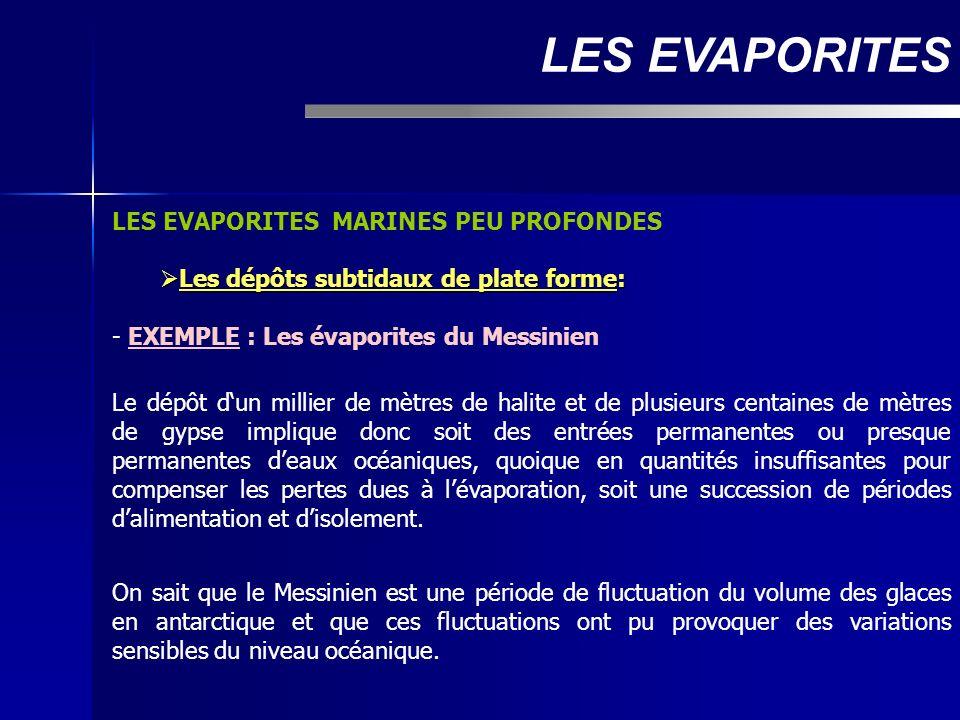 LES EVAPORITES MARINES PEU PROFONDES Les dépôts subtidaux de plate forme: Les dépôts subtidaux de plate forme: - EXEMPLE : Les évaporites du Messinien