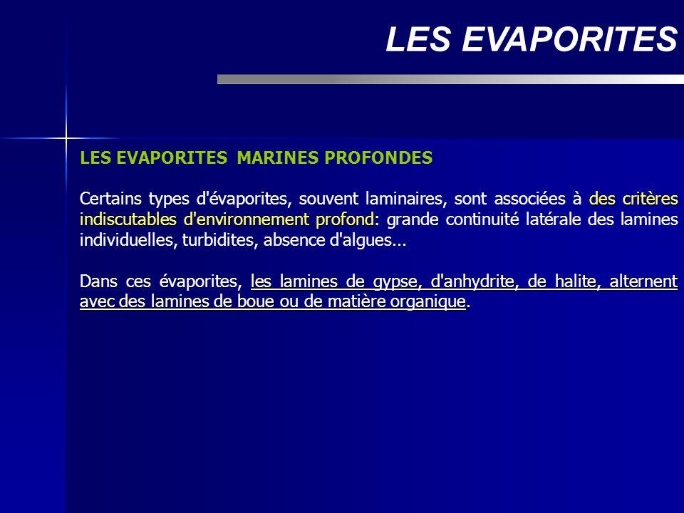 LES EVAPORITES MARINES PROFONDES des critères indiscutables d'environnement profond Certains types d'évaporites, souvent laminaires, sont associées à