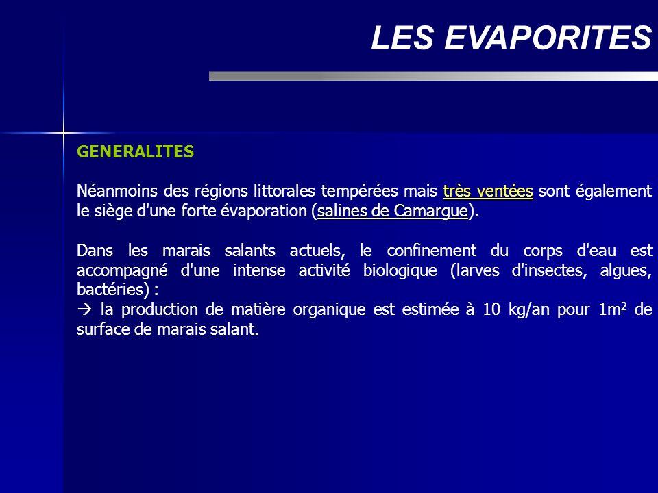 GENERALITES très ventées salines de Camargue Néanmoins des régions littorales tempérées mais très ventées sont également le siège d'une forte évaporat