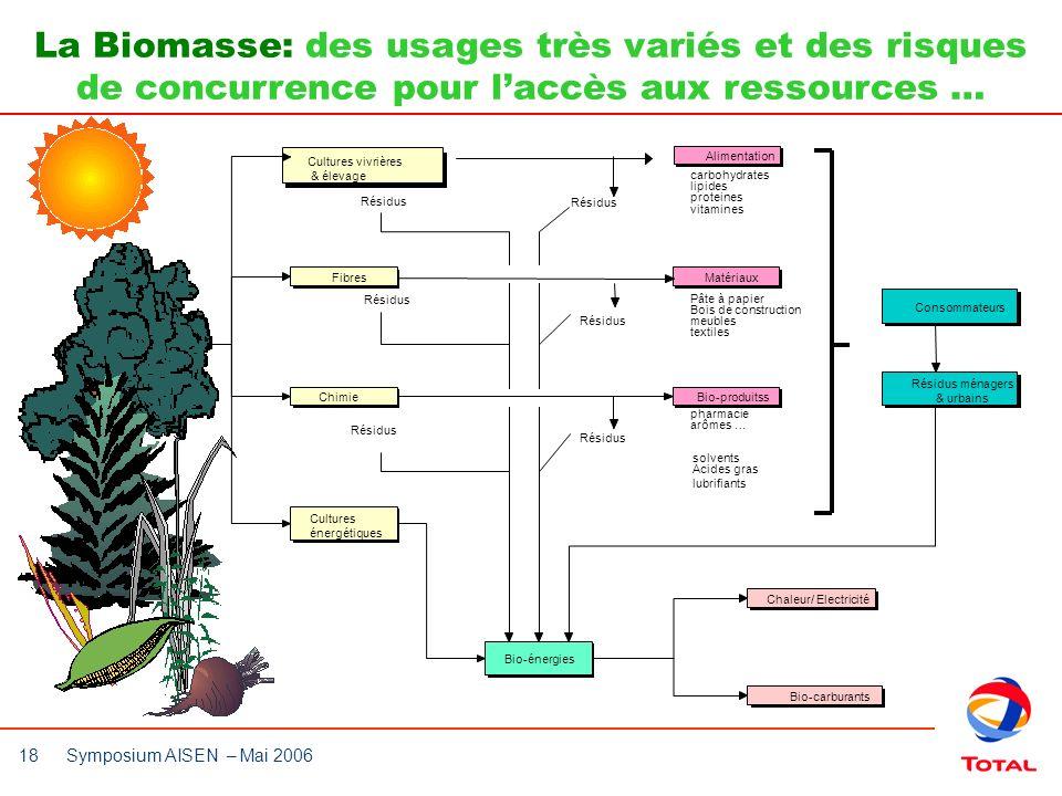 18 Symposium AISEN – Mai 2006 Cultures vivrières & élevage FibresChimie Cultures énergétiques MatériauxBio-produitss Consommateurs Résidus ménagers &
