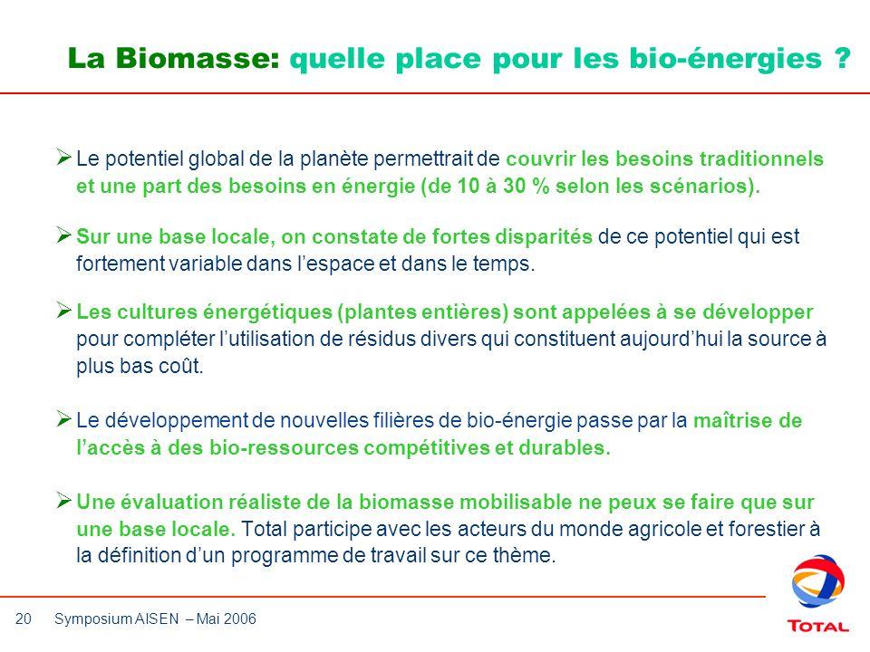 20 Symposium AISEN – Mai 2006 Le potentiel global de la planète permettrait de couvrir les besoins traditionnels et une part des besoins en énergie (d