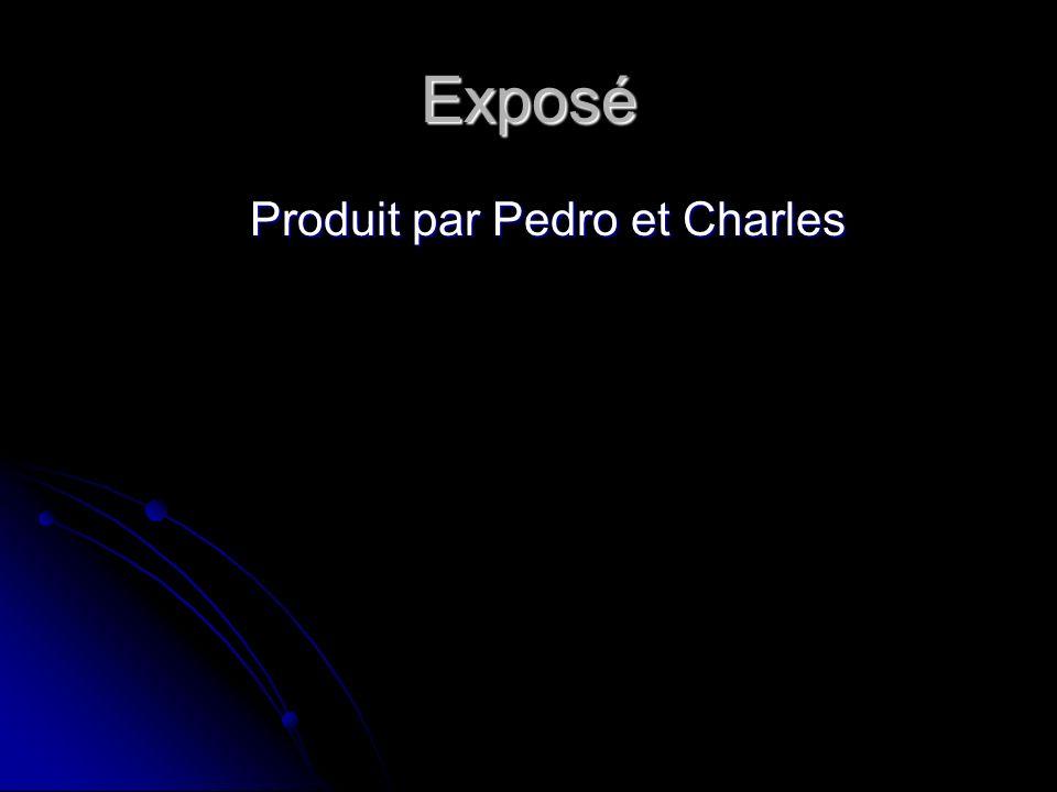 Exposé Produit par Pedro et Charles