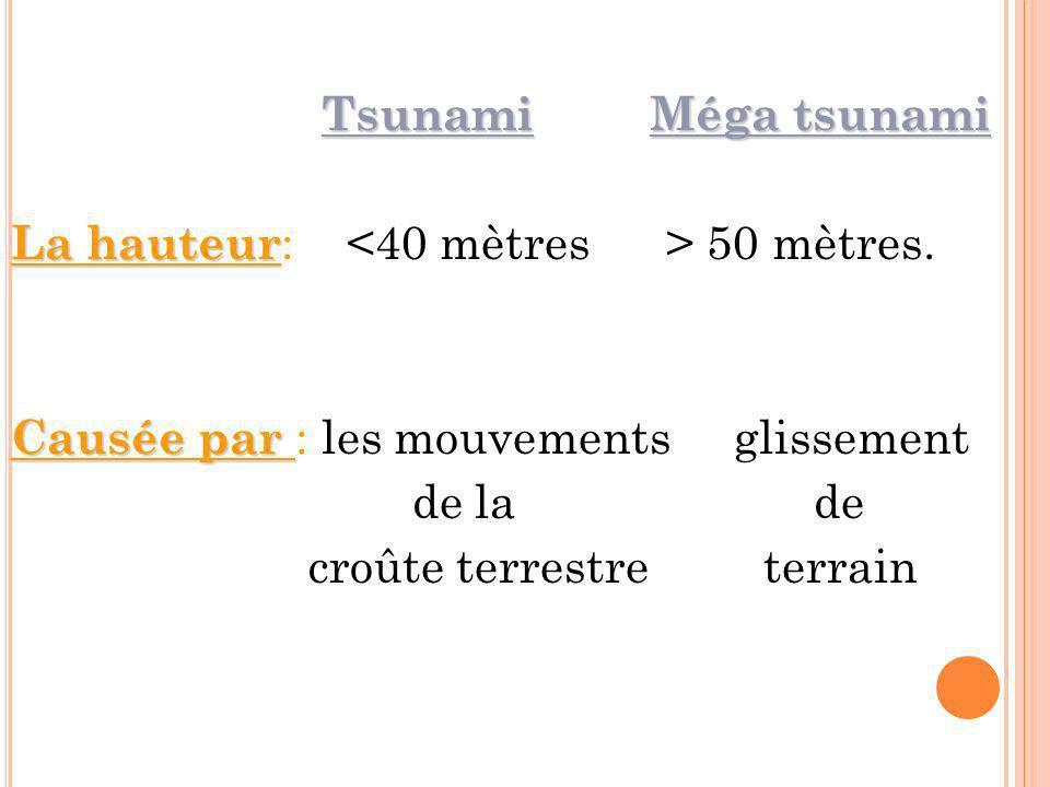 TsunamiMéga tsunami Tsunami Méga tsunami La hauteur La hauteur : 50 mètres. Causée par Causée par : les mouvements glissement de la de croûte terrestr
