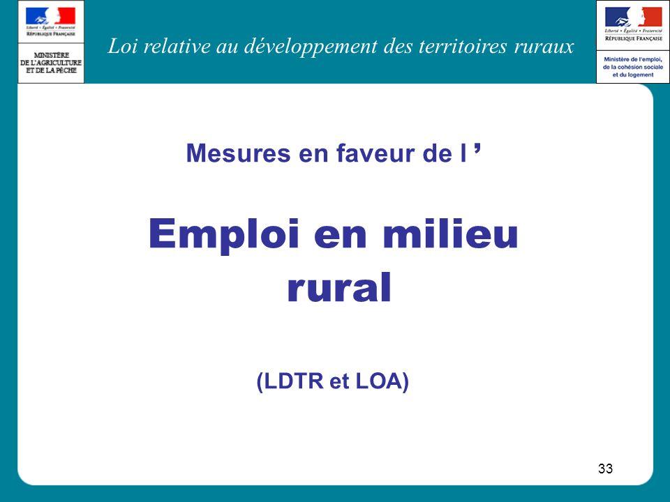 Loi relative au développement des territoires ruraux 33 Mesures en faveur de l Emploi en milieu rural (LDTR et LOA)