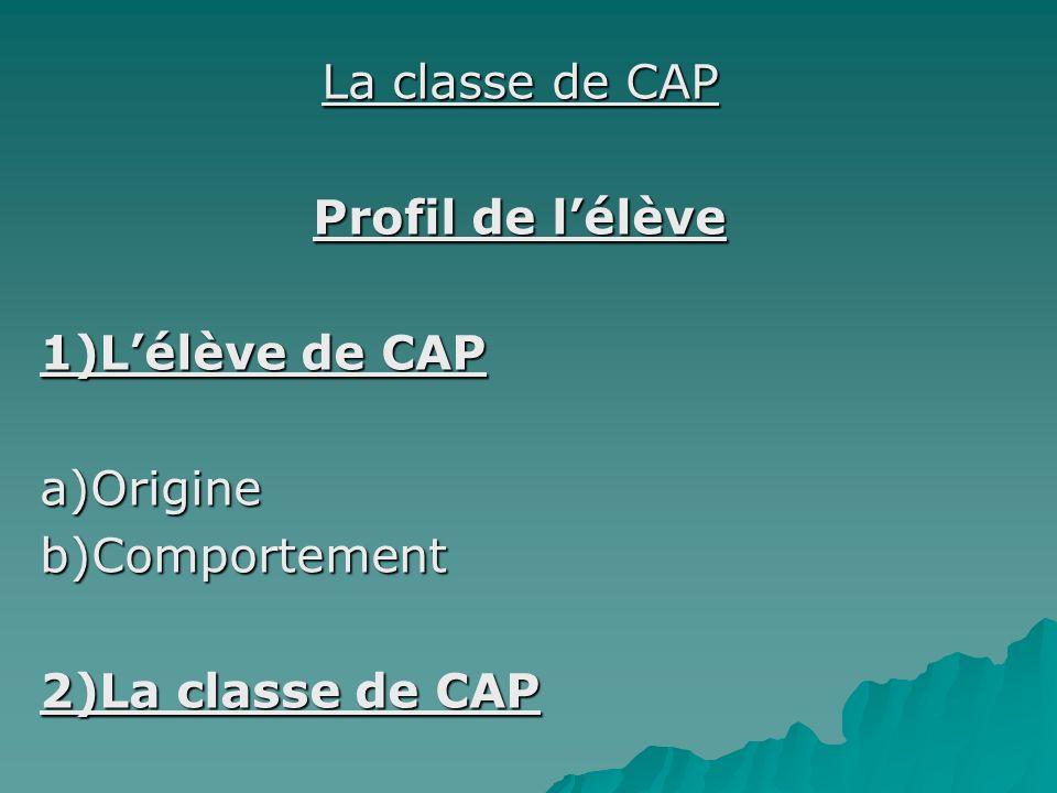 La classe de CAP Profil de lélève 1)Lélève de CAP a)Origineb)Comportement 2)La classe de CAP