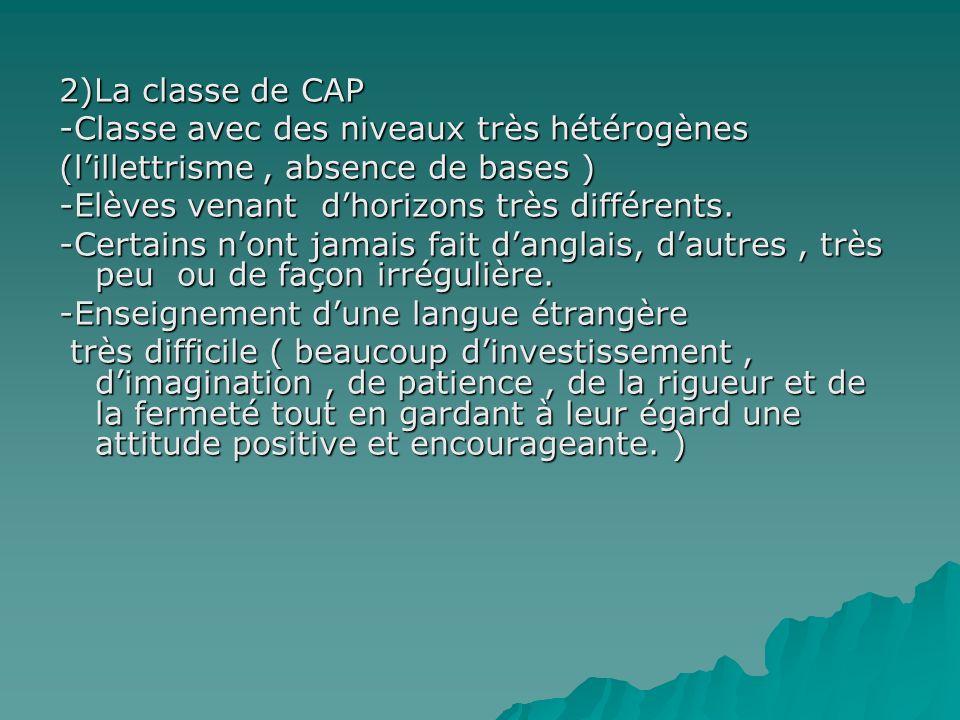2)La classe de CAP -Classe avec des niveaux très hétérogènes (lillettrisme, absence de bases ) -Elèves venant dhorizons très différents.