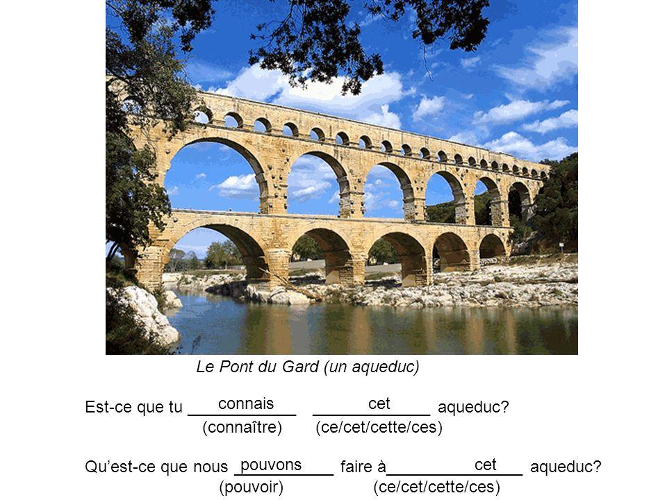 Le Pont du Gard (un aqueduc) Est-ce que tu ____________ _____________ aqueduc? (connaître) (ce/cet/cette/ces) Quest-ce que nous ___________ faire à___